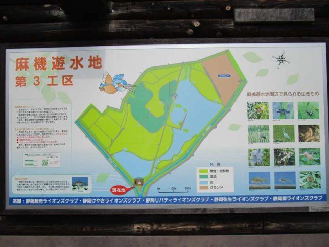 麻機遊水地 案内図