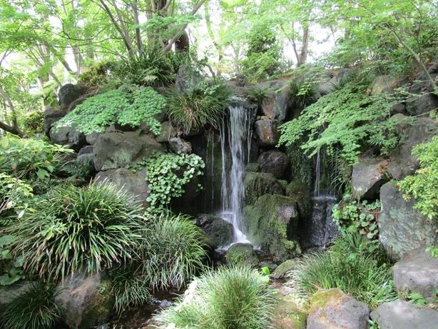 紅葉山庭園 山の庭02