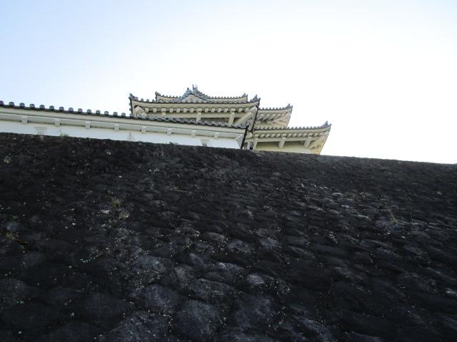 掛川城 石垣