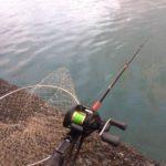 2018年7月8日 紀州釣り釣行記 静岡用宗港  全てが空回り