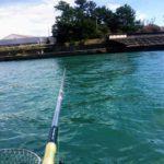 2018年9月16・17日 紀州釣り釣行記 2日連続で用宗港へ